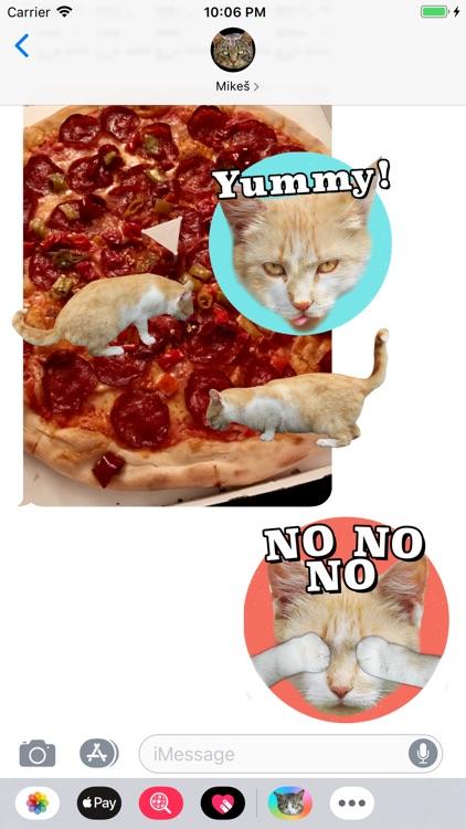 Cat Stickers Meow screenshot-8