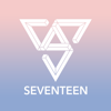 Seventeen Light Stick
