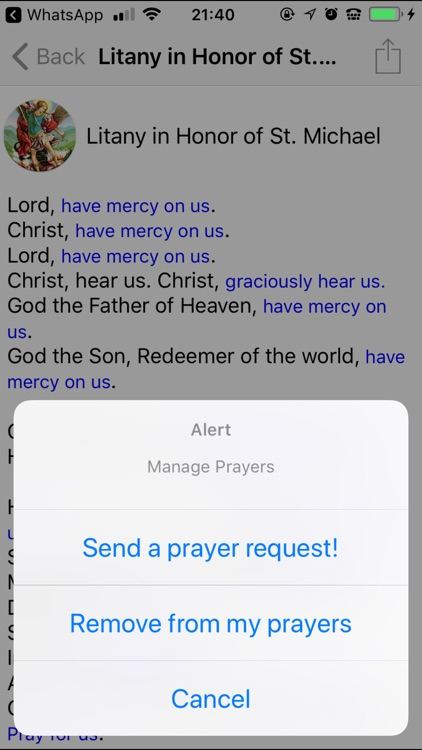 Saint Michael Prayers screenshot-3