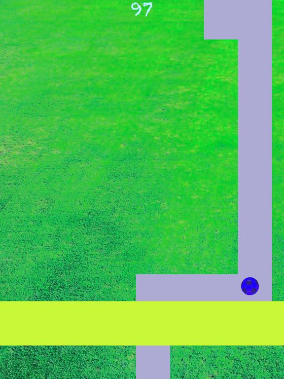 Line Roll - Premium screenshot 9