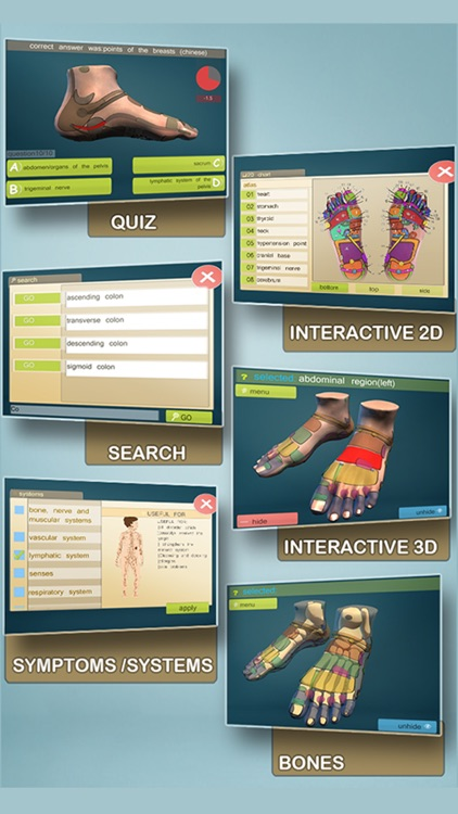 Total Reflexology-3D screenshot-1
