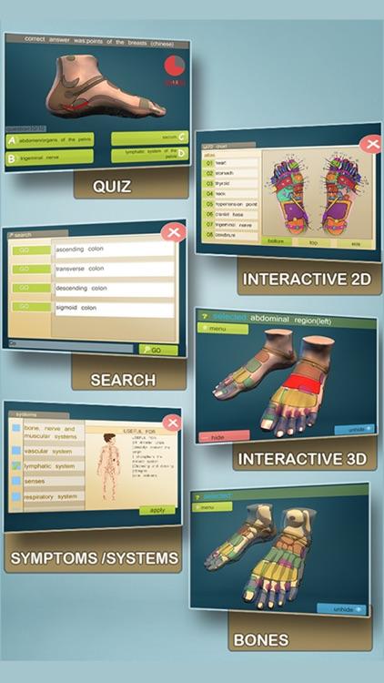 Total Reflexology-3D