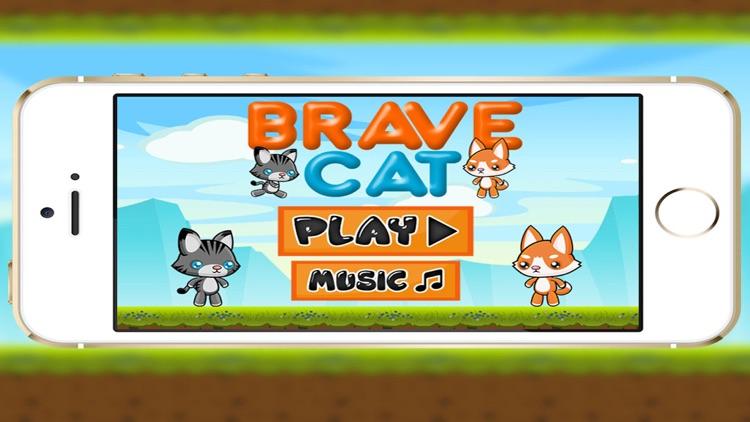 Brave Cat Adventure