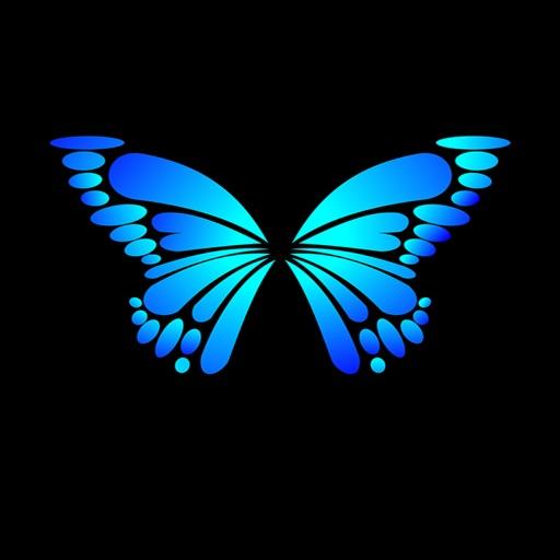 Butterflies - Farfalle