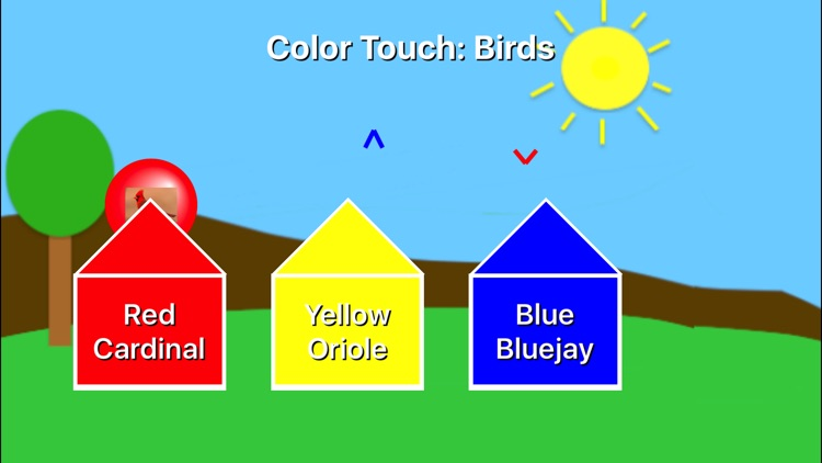 Color Touch: Birds screenshot-0