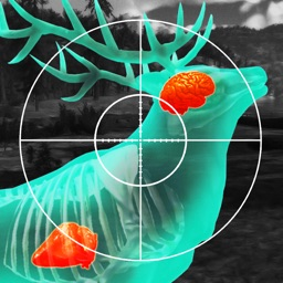 Wild Hunt: Hunting Games