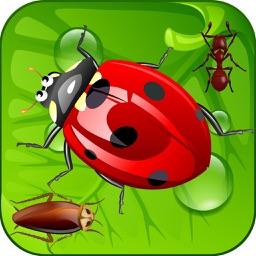Kill Ants Bug
