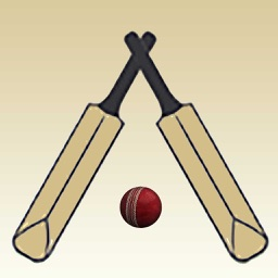 Swing Cricket 2