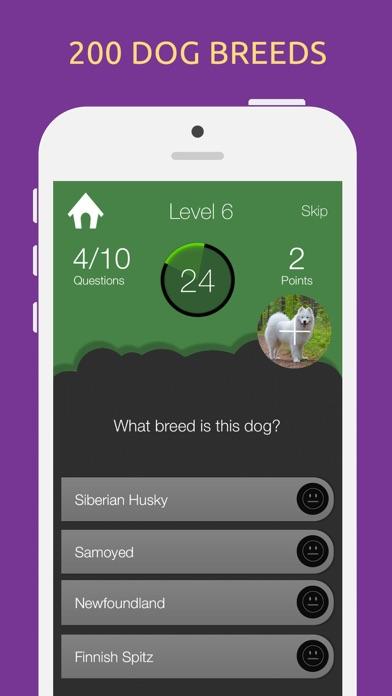 Dog Breeds Quiz Game screenshot two