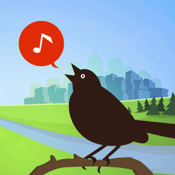 Chirp Bird Songs Calls Usa app review