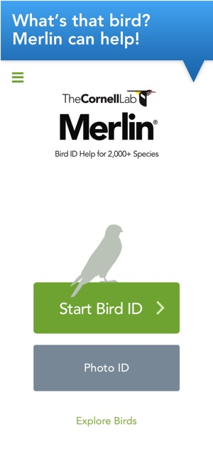 Merlin bird id by cornell lab on the app store iphone screenshots fandeluxe Image collections