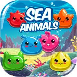 海洋动物配配看