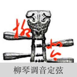LiuQin Tuner-Tuner for LiuQin