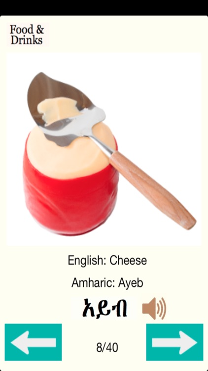 Amharic Food