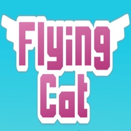 Flying-Cat Coin Power