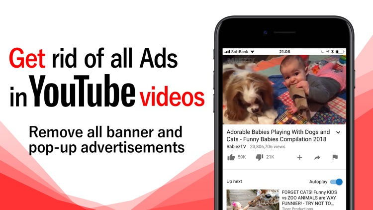BlockTube-Adblocker forYouTube