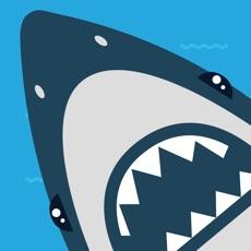 Activities of Bouncy Shark
