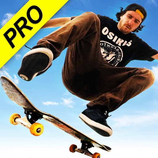Skateboard Party 3: Pro