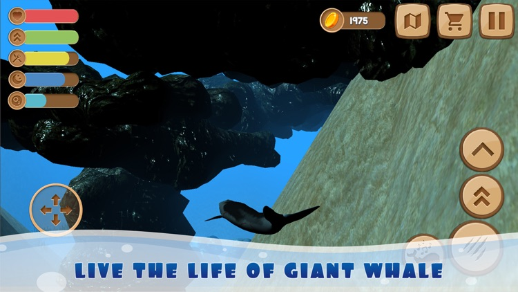 Big Whale Ocean Life Sim 3D