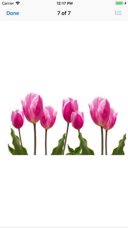 Terrific Tulip Stickers screenshot-6