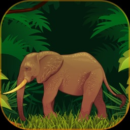 3D Elephant Attack