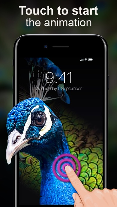 Live Wallpapers Unlimited screenshot two