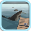 RAFT ISLAND SHARK SURVIVAL
