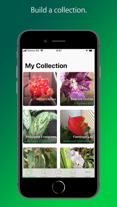 Screenshot for PlantSnap Pro: Identify Plants in Australia App Store