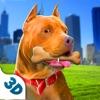 Dog Life - Pitbull Sim