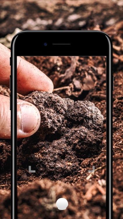Truffle - Instant truffle mushroom identification