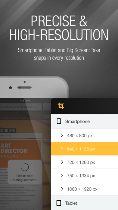 webSnap - Screenshots for Devs screenshot two
