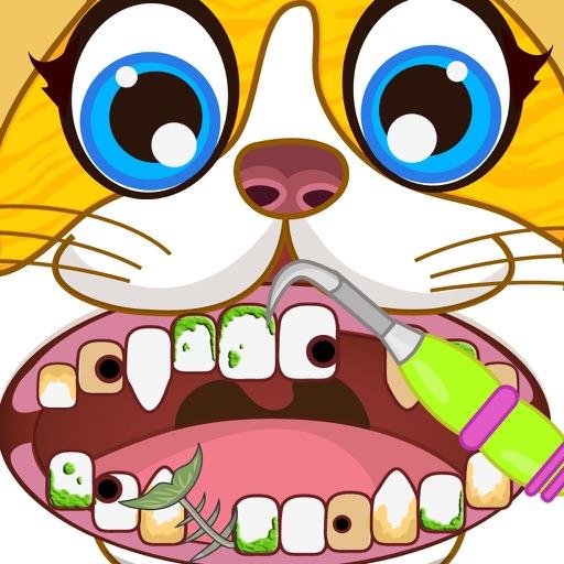 Dentist Office Pets Vet Doctor
