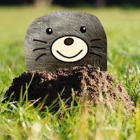 Codes for Moles Attack Hack