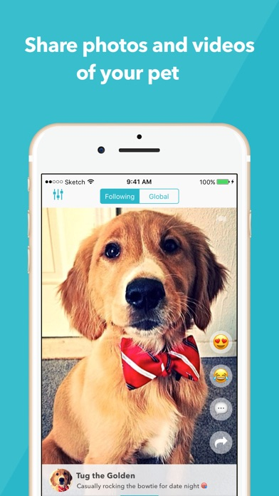 Cutesy - The cutest pets! Screenshot