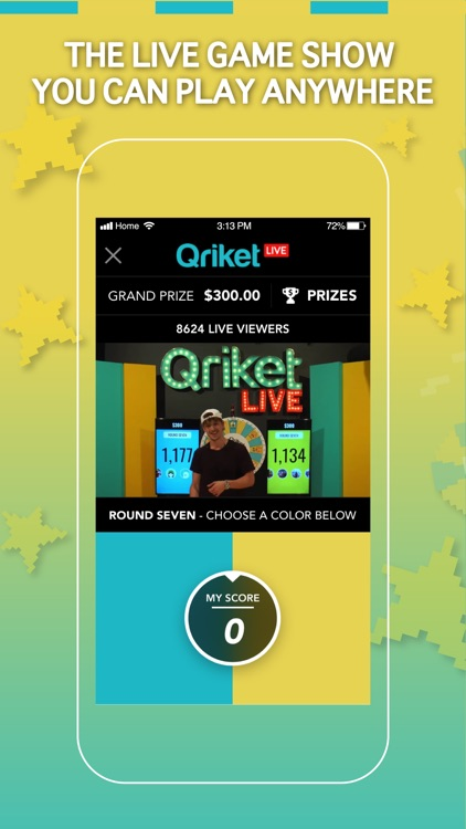 Qriket screenshot-0