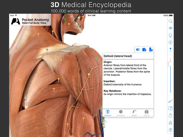 Pocket Anatomy (2018) on the App Store