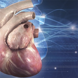 Cardiology 3D Small Animals