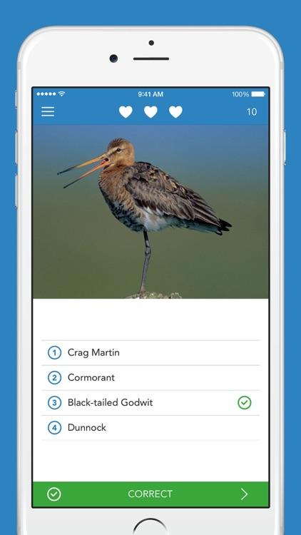 iKnow Birds 2 LITE screenshot-3