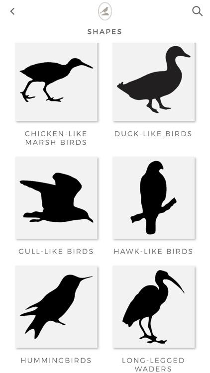 Fieldstone Guide: Birds screenshot-3