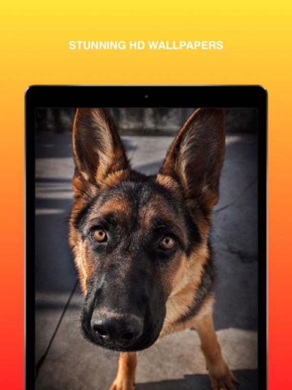 German Shepherd Wallpaper App Price Drops