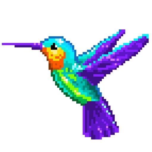 Colibri Number coloring