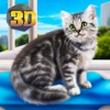 Home Kitty City Survival Sim