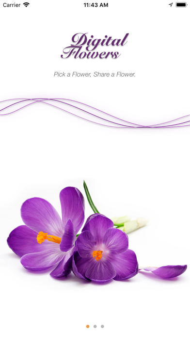 Digital Flower Screenshot