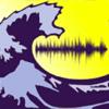 Wav Voice Tune