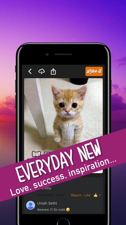Quotes Pictures & Videos daily