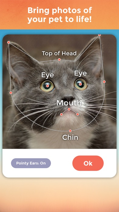 My Talking Pet Pro app image