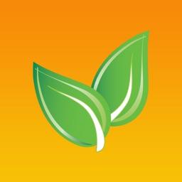 Nourish Daily - BMI Diet Free