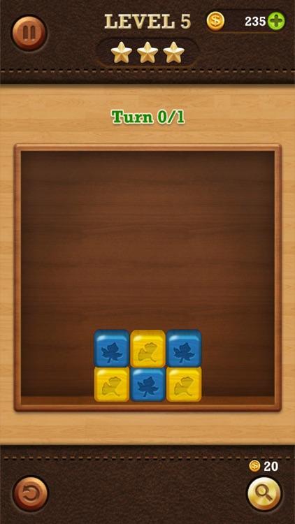 Break the Block: Slide Puzzle screenshot-4