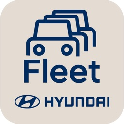 Hyundai Fleet Link