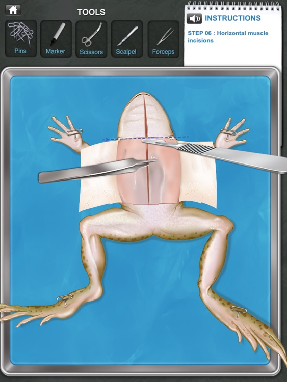 Frog Dissection screenshot-1